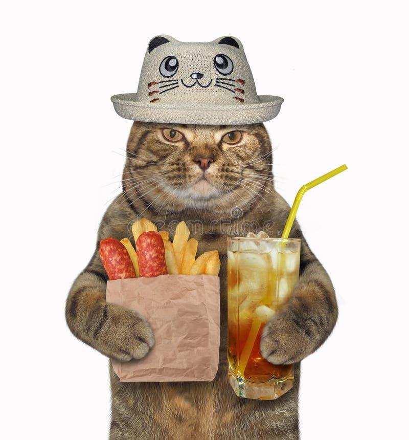 Gato en un sombrero divertido con la patata frita imagen de archivo libre de regalías