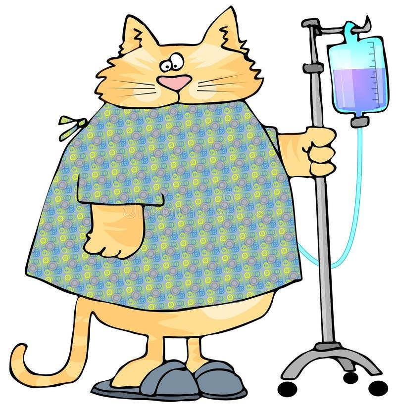 Gato enfermo ilustración del vector