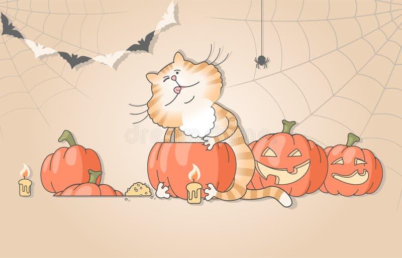 Gato engraçado que cinzela abóboras para o Dia das Bruxas ilustração stock