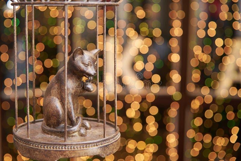 Gato forjado em uma gaiola no fundo de luzes brilhantes do bokeh do defocus imagens de stock royalty free