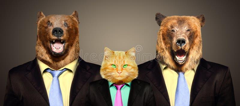 Gato guardado por dois ursos em ternos de negócio fotografia de stock royalty free