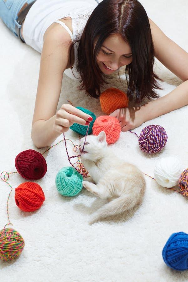 Gato juguetón imagen de archivo libre de regalías