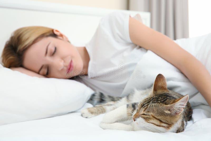 Gato lindo y mujer joven que se relajan imagen de archivo