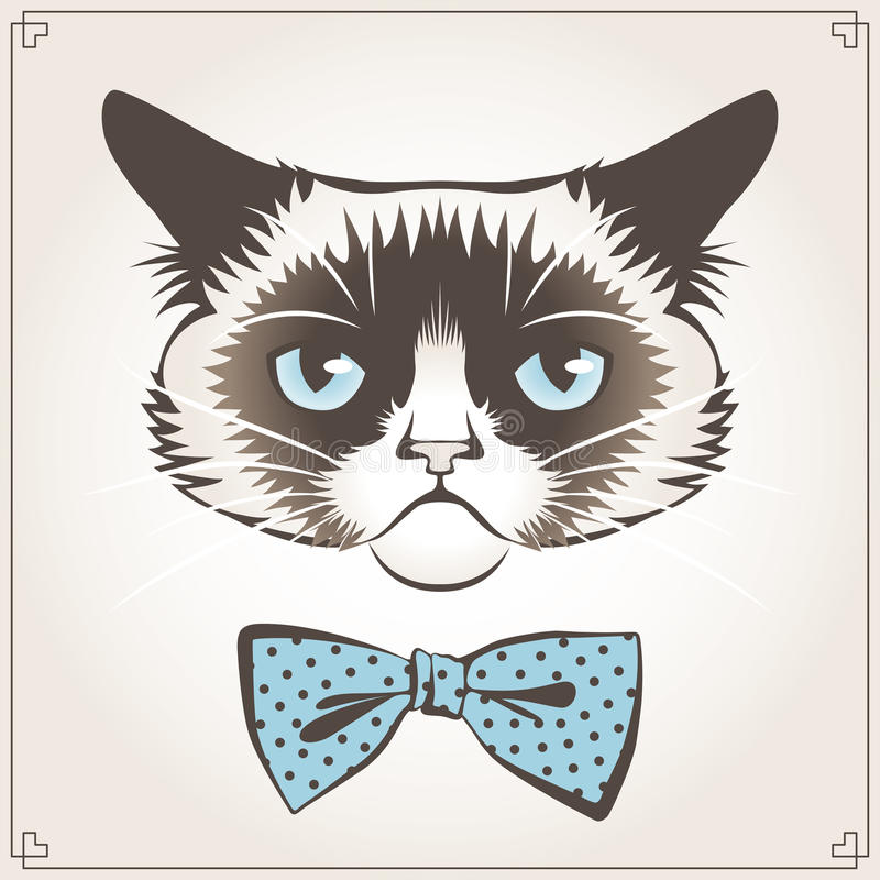 Gato mal-humorado ilustração stock