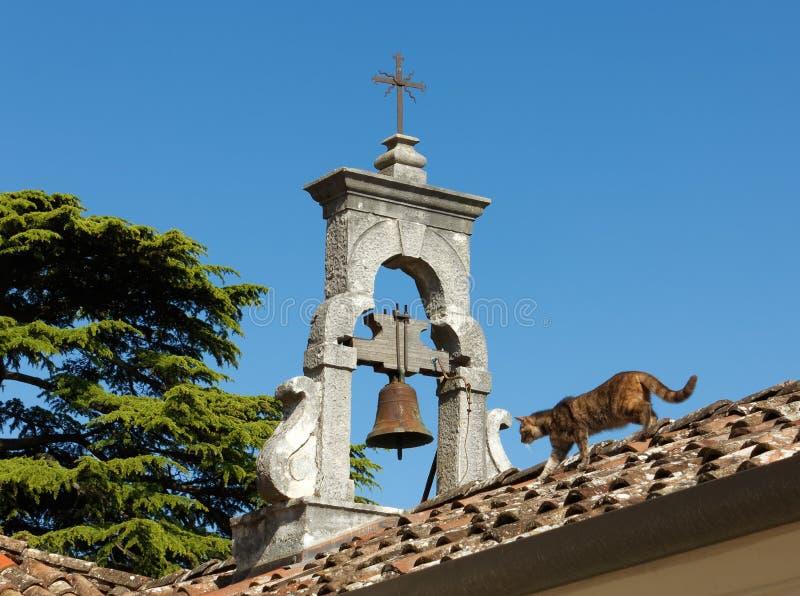 Gato no telhado de uma igreja fotografia de stock