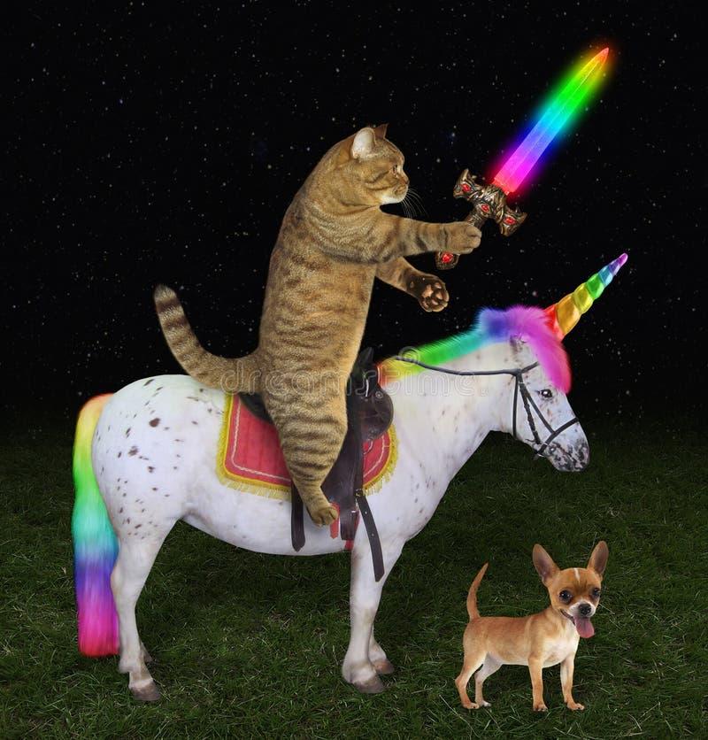 Gato no unicórnio perto de um cão fotos de stock royalty free