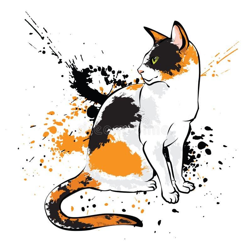 Gato oriental en el fondo blanco con el chapoteo de la pintura stock de ilustración