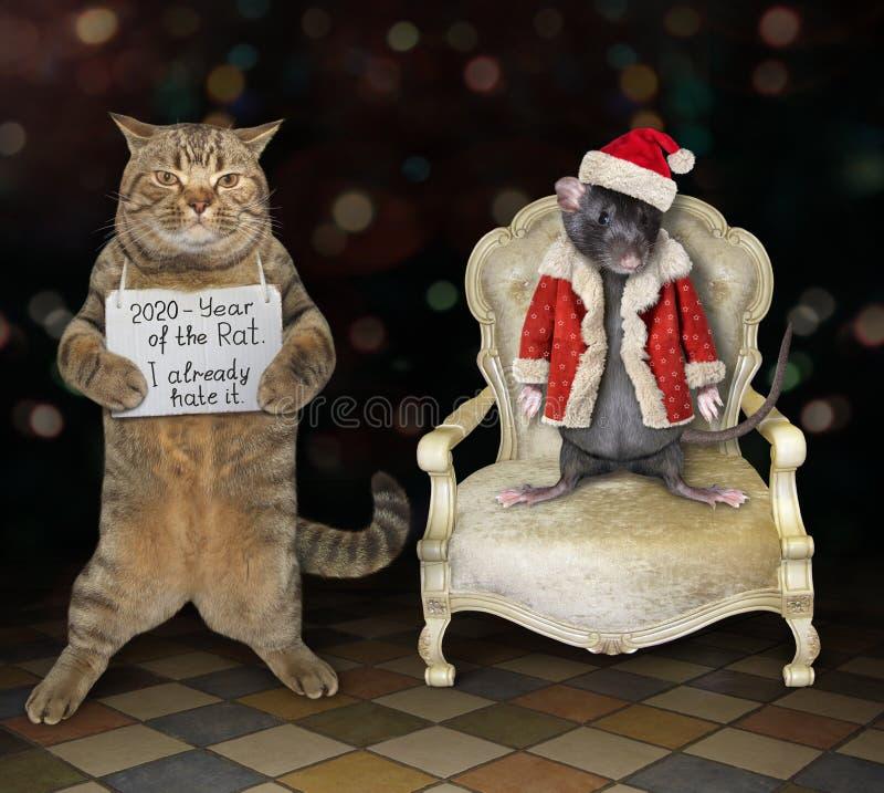 Gato perto de rato nas roupas de Papai Noel imagens de stock