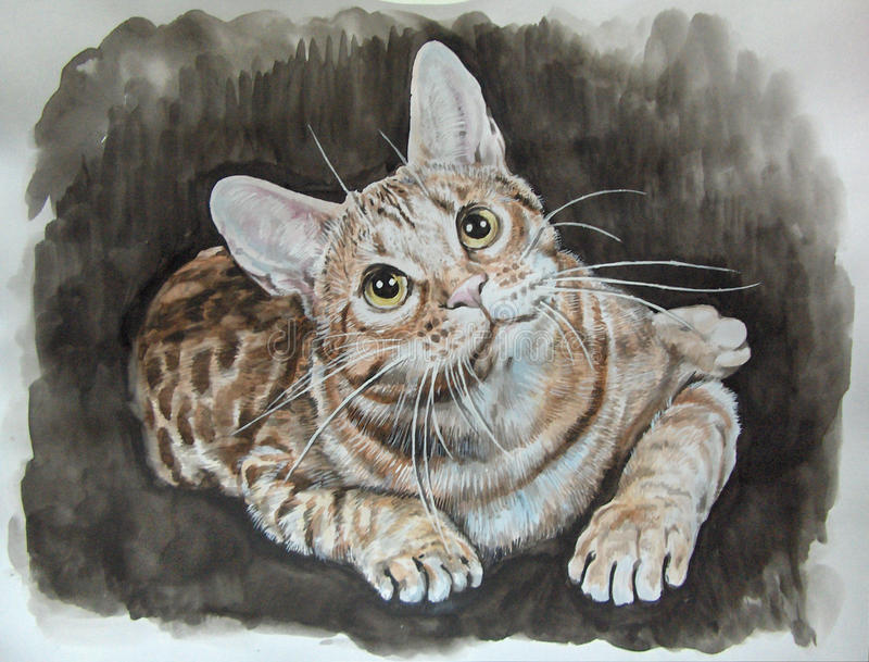 Gato, pintado con las acuarelas fotos de archivo libres de regalías