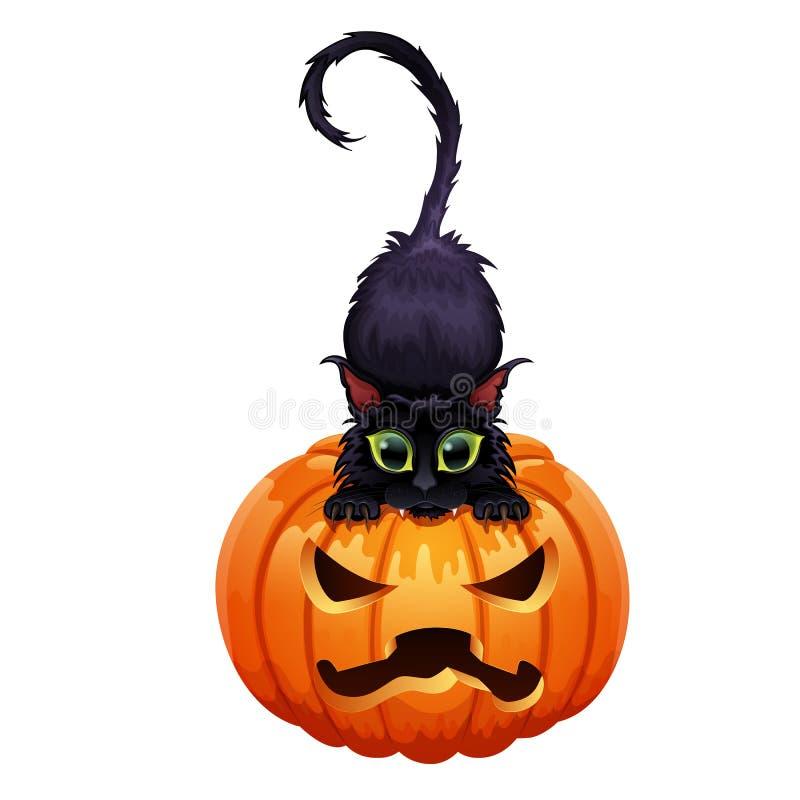 Gato preto com os olhos verdes que levantam na abóbora, gato em um Dia das Bruxas, ilustração stock