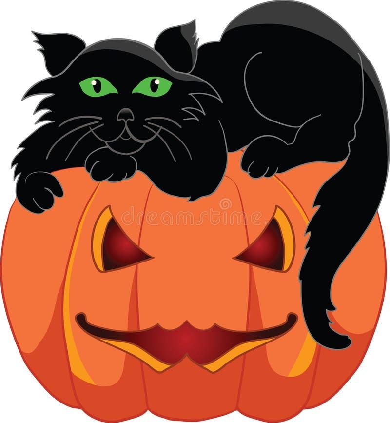 Gato preto com uma abóbora do Dia das Bruxas ilustração stock