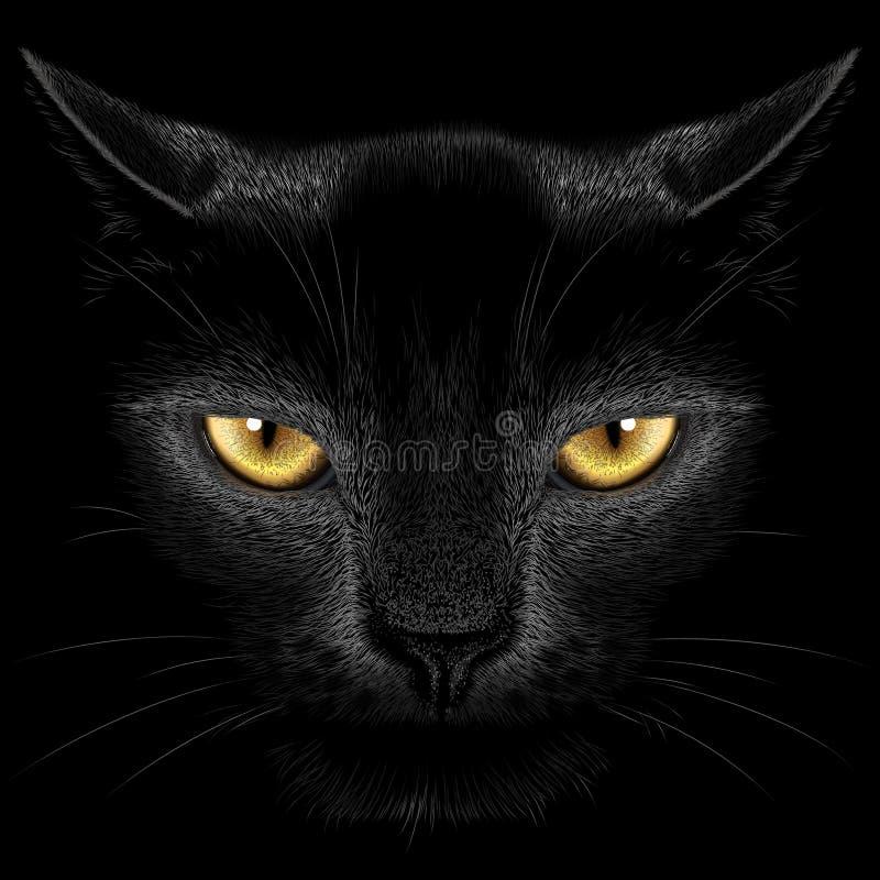 Gato preto em um fundo preto ilustração stock