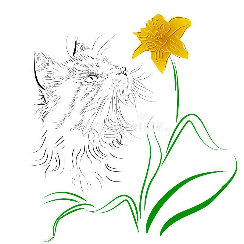 Gato que cheira uma flor ilustração stock