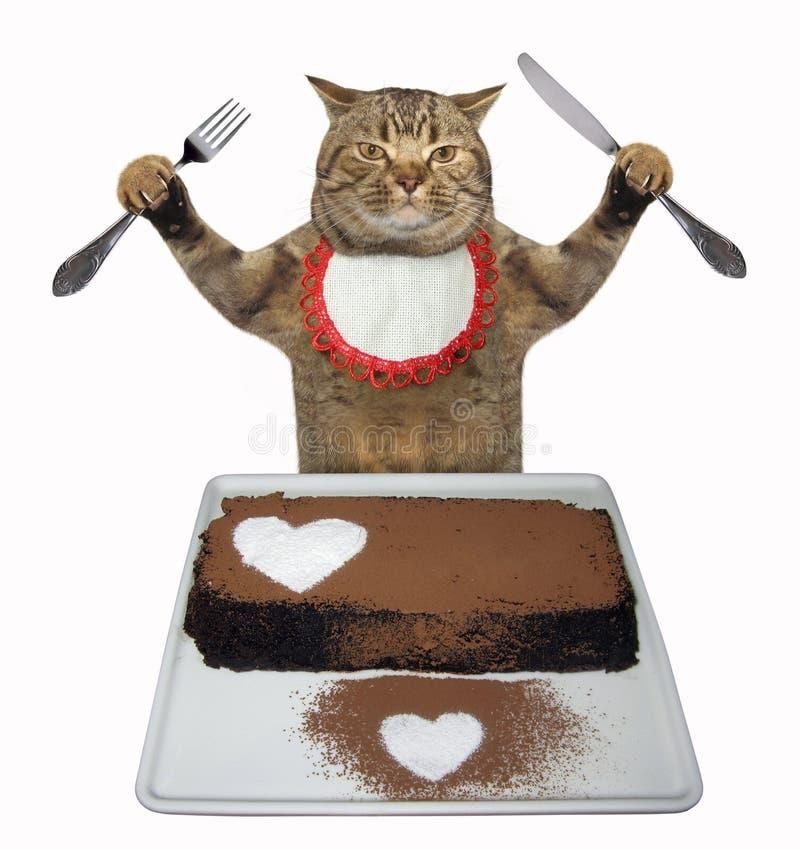 Gato que come um bolo de chocolate imagem de stock royalty free