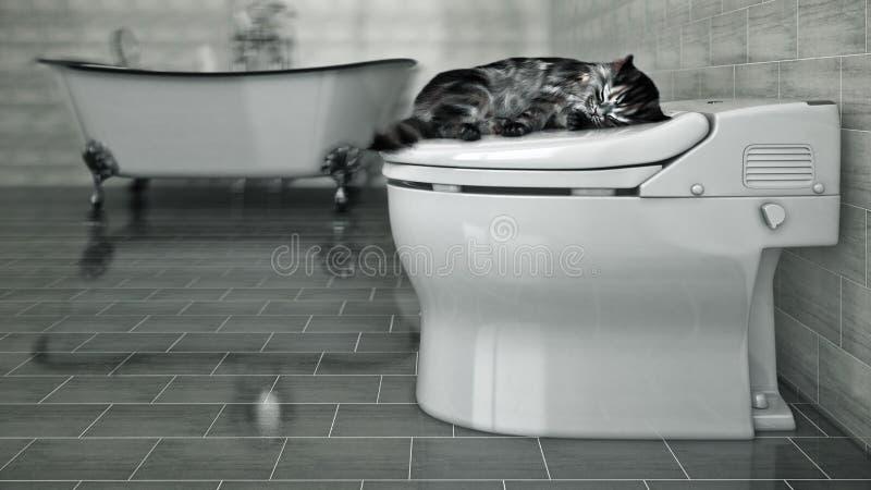 Gato que duerme en el retrete libre illustration