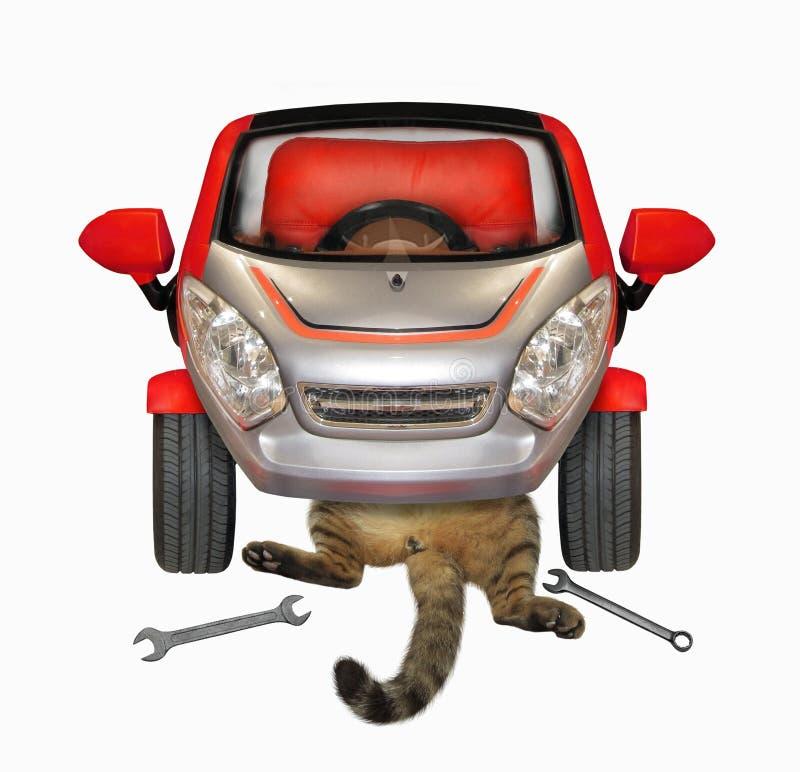 Gato que fija su coche rojo imagen de archivo