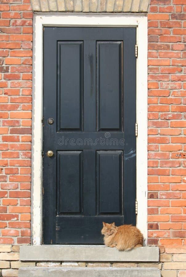 Gato que se sienta por una puerta fotografía de archivo