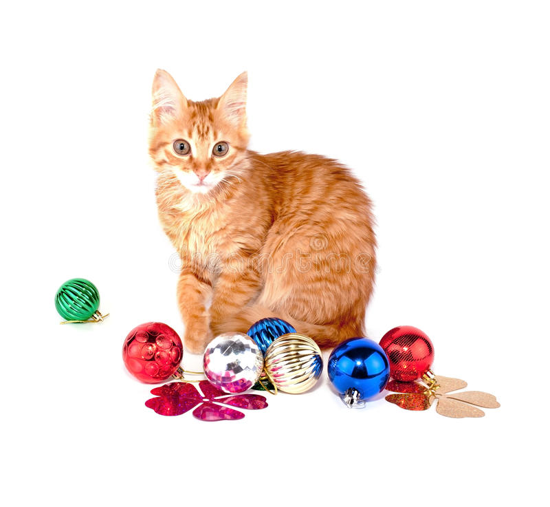 Gato rojo con las bolas de la Navidad imagen de archivo libre de regalías