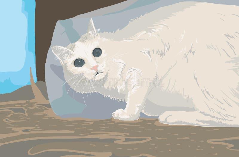 Gato Scared fotos de stock