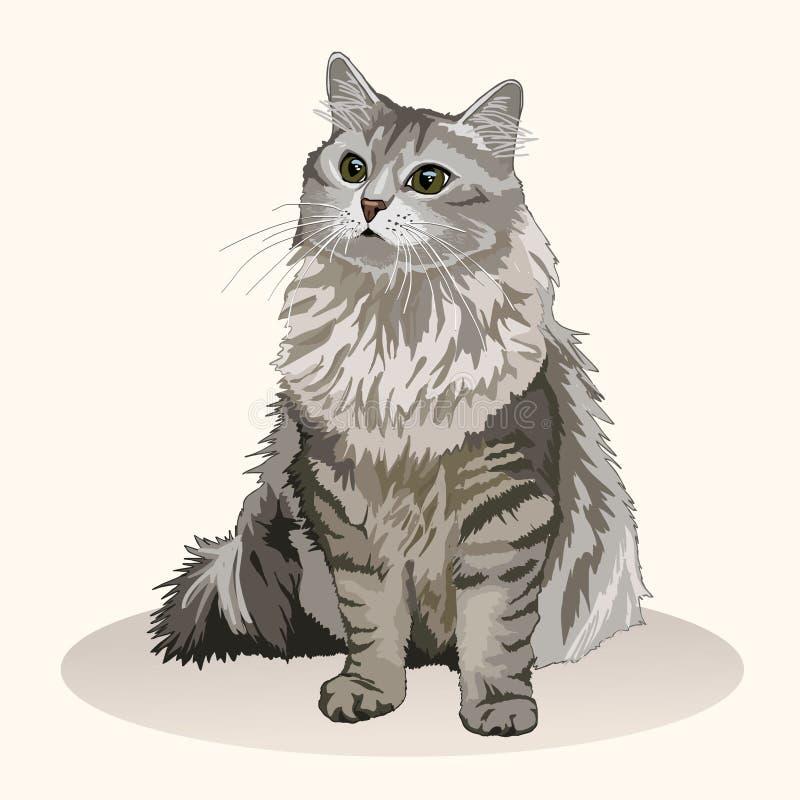 Gato siberiano Raza del gato Animal doméstico preferido Gatito mullido precioso con los ojos verdes Ilustración realista del vect stock de ilustración