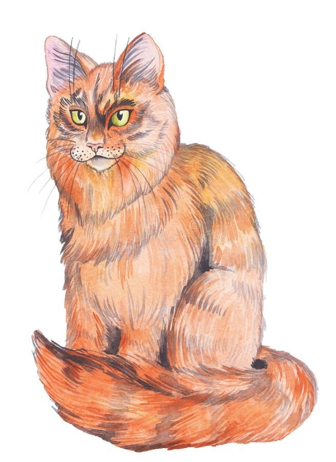 Gato tirado mão do vermelho da aquarela imagem de stock
