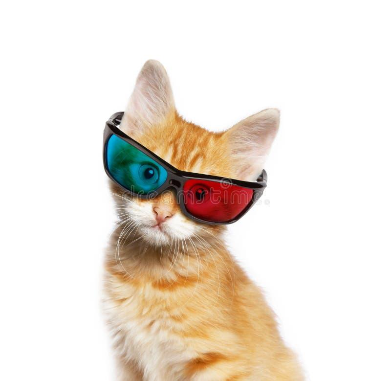 Gato vermelho com vidros 3d imagens de stock royalty free