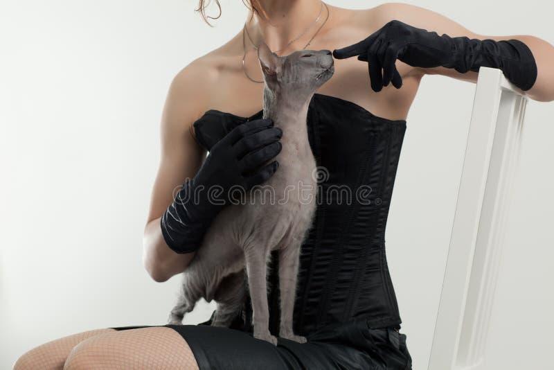 Gato y mujer imágenes de archivo libres de regalías