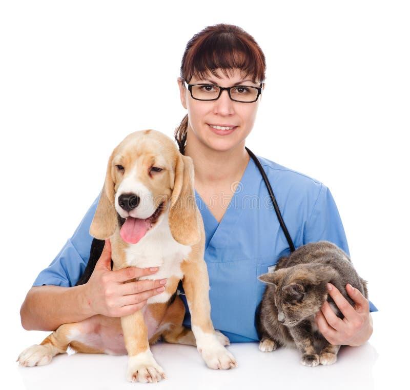 Gato y perro de abrazo veterinarios Aislado en el fondo blanco fotos de archivo