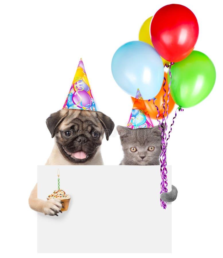 Gato y perro en los sombreros del cumpleaños que sostienen la torta y los globos que miran a escondidas de detrás tablero vacío A fotos de archivo libres de regalías