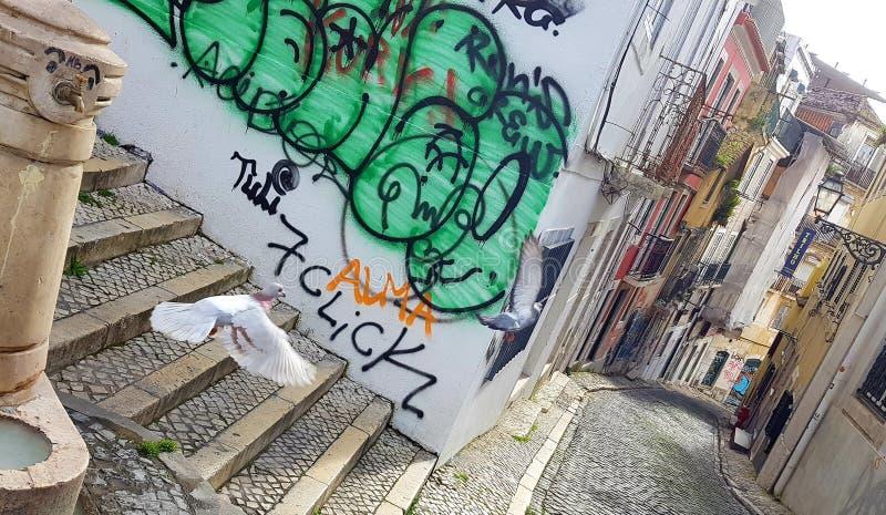 Gator av Lissabon med flygfåglar arkivfoton