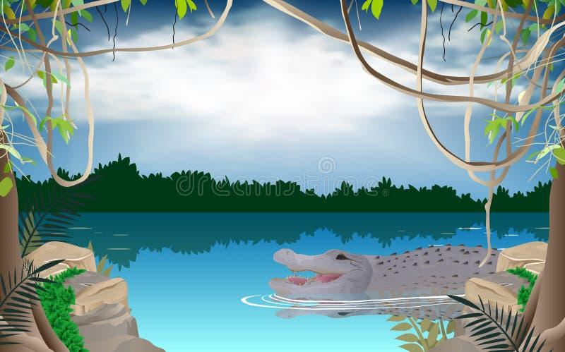 Gator in de rivier in de wildernis royalty-vrije illustratie