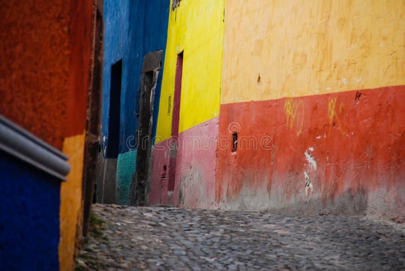 gator för allende kullerstende mexico miguel san arkivfoto