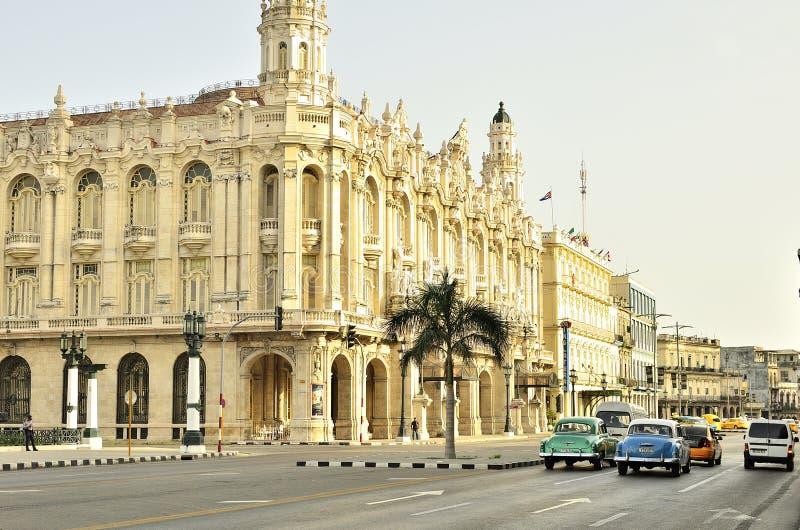 gator i den Kuba droppen royaltyfria foton