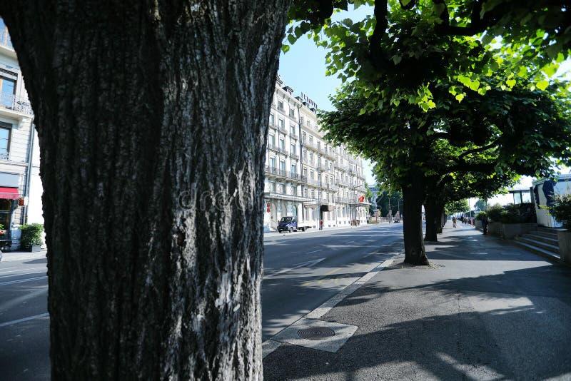 Gator i Genève, Schweiz royaltyfri foto