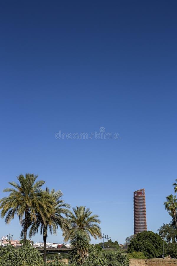Gator och hörn av Seville _ spain royaltyfri foto