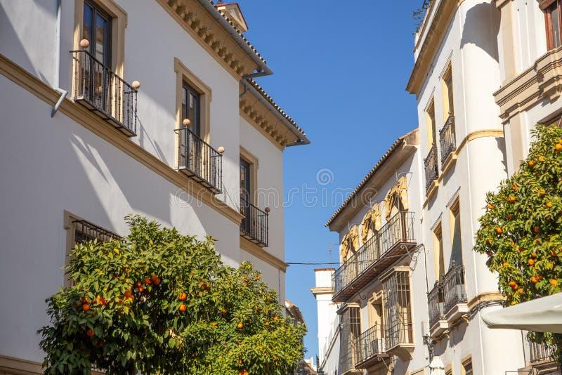Gator och hus av Cordoba, Spanien royaltyfri foto