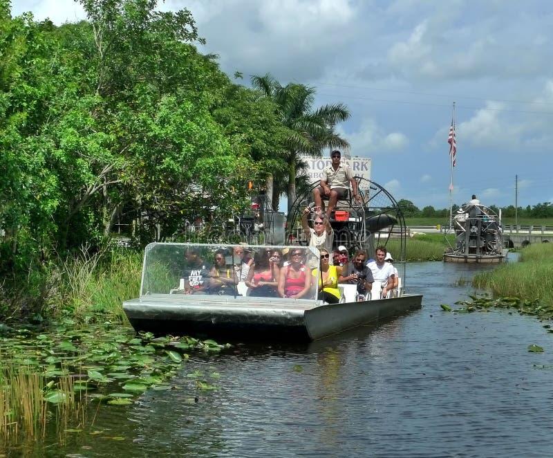 Gator park. At florida everglades royalty free stock image