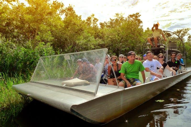 Gator park. At florida everglades stock photo