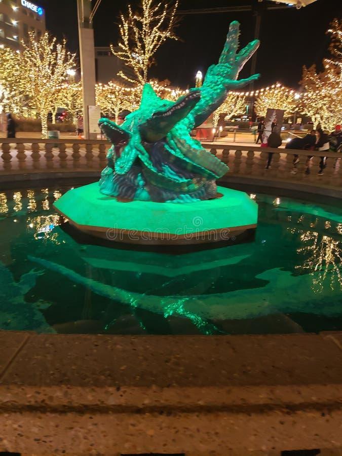 Gator statue. Beautiful, texas, lights stock images