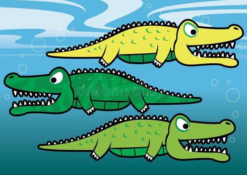 Gators. vector illustration