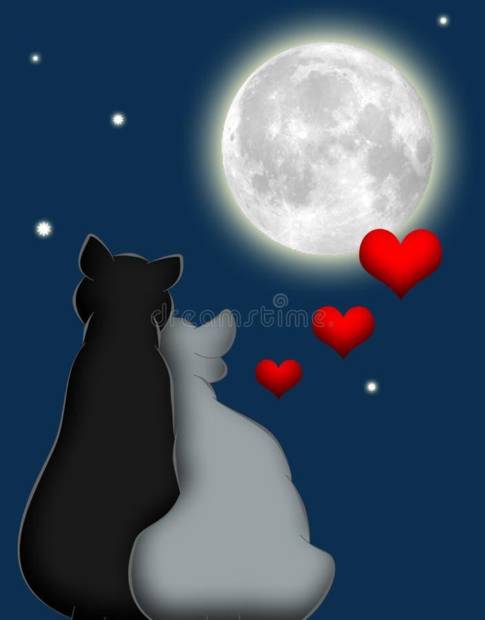 Gatos 3 do amor ilustração royalty free