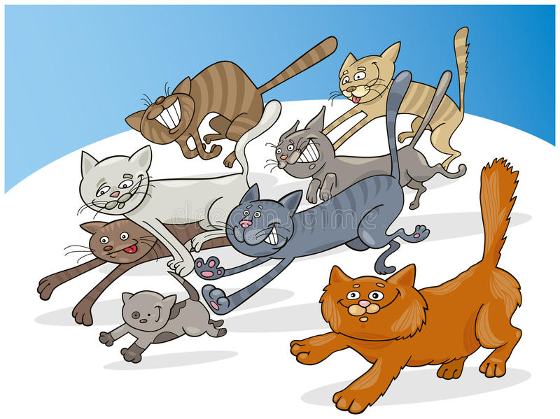 Gatos corrientes libre illustration
