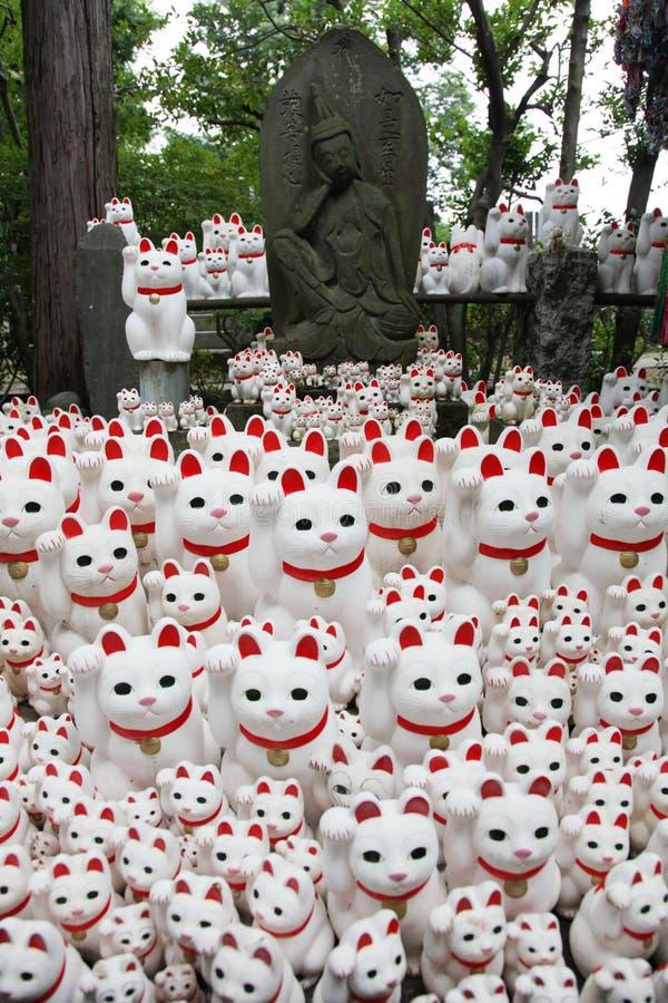 Gatos da Buda imagem de stock royalty free