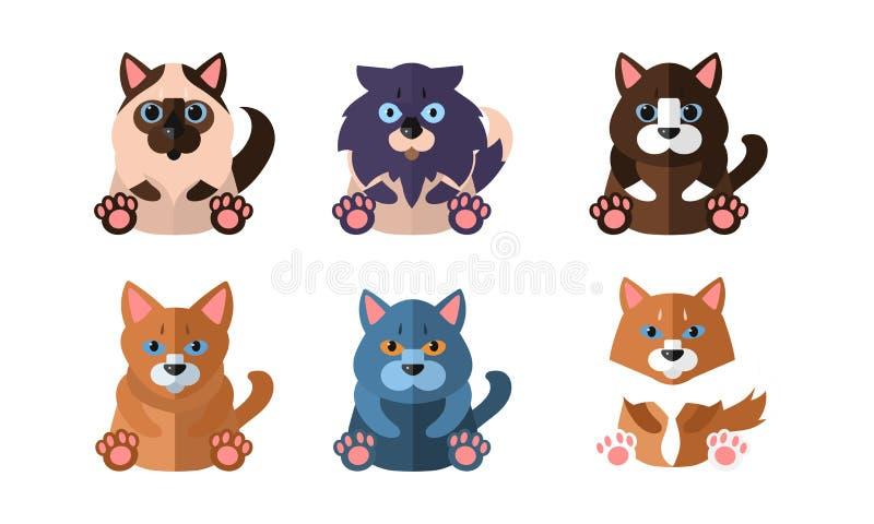 Gatos de diverso sistema de las razas, animales domésticos lindos de los animales de la historieta que sientan el ejemplo del vec ilustración del vector