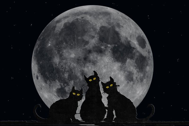 Gatos de Halloween ilustração stock
