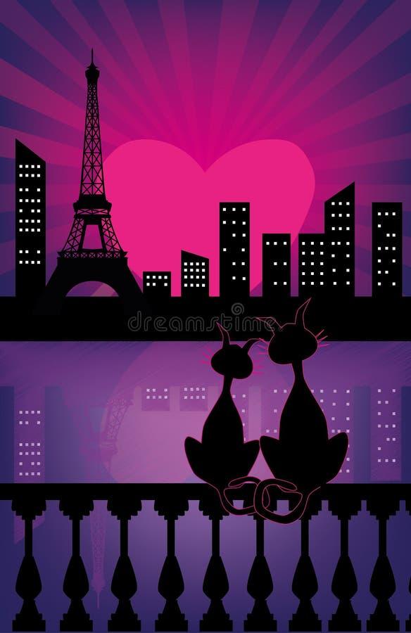 Gatos do amor ilustração do vetor