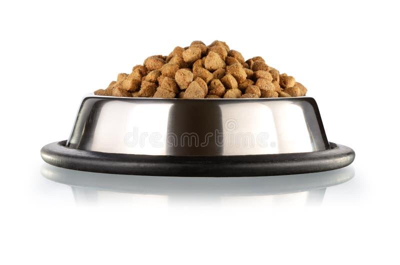 Gatos e alimento de cães fotografia de stock