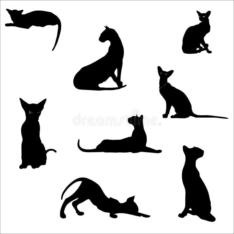 Gatos em poses diferentes, silhuetas O gato encontra-se, senta-se, estica-se sua parte traseira, silvos, joga, vai Animal gracios ilustração stock