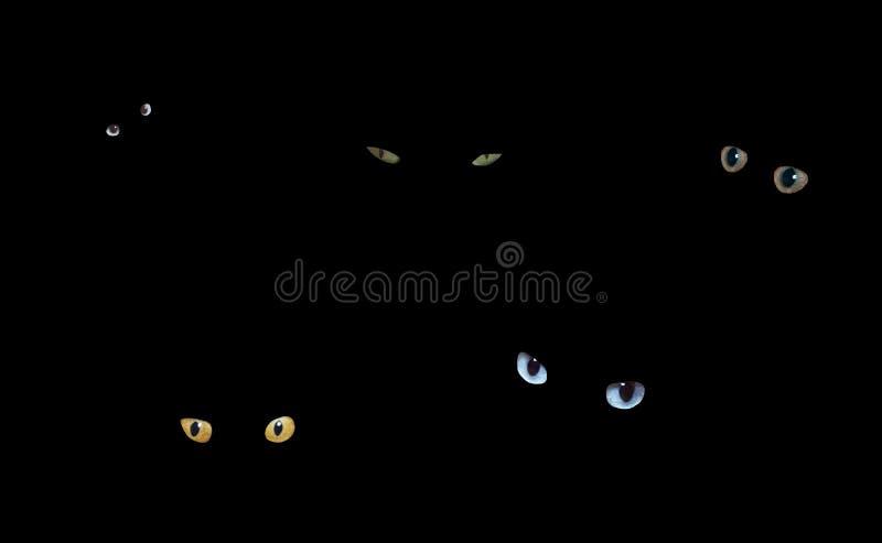 Gatos na obscuridade ilustração do vetor