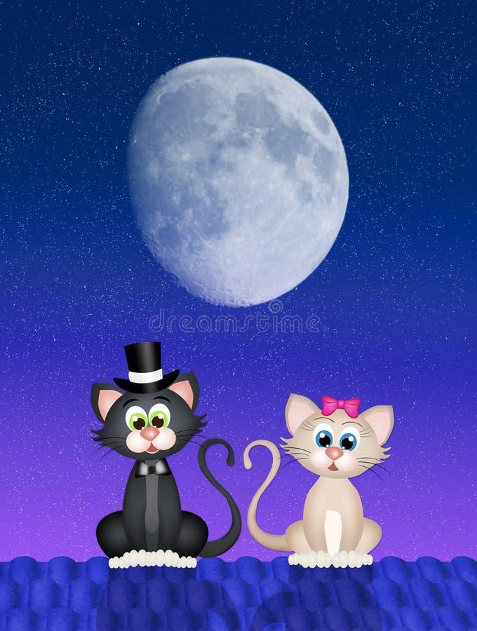 Gatos no telhado na noite ilustração do vetor